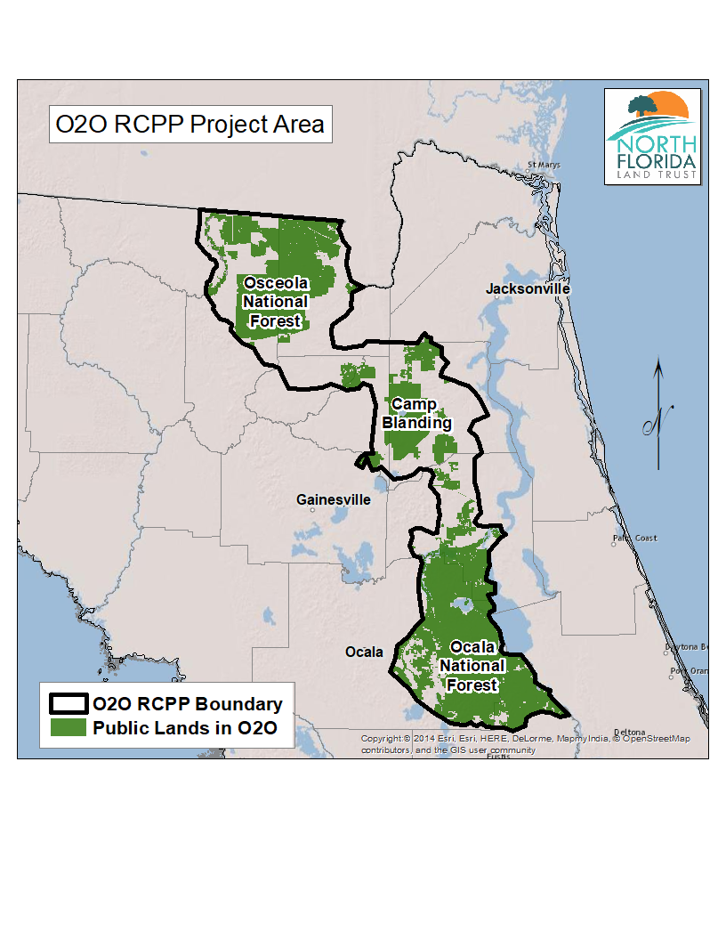Camp Blanding Florida Map.North Florida Land Trust S O2o Project Has Been Chosen For Federal